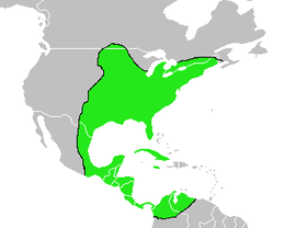 Vireo flavifrons-Map.png