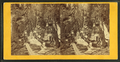 Visitors at the Flume, 1867, by H. S. Fifield 3.png