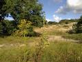 Vlakte van Waalsdorp (Waalsdorpervlakte) 2016-08-10 img. 406.png