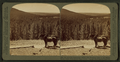 W. from Continental Divide over Shoshone Lake to the Grand Teton, Yellowstone Park, U.S.A, by Underwood & Underwood 2.png