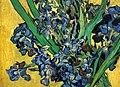 WLANL - Techdiva 1.0 - Irissen (detail), Vincent van Gogh (1890).jpg