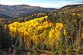 W down Hwy 14 toward Cedar, Utah - (22191070323).jpg