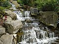 Waterfall-Holland-Park-شلال.JPG