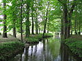 Wesenitz im Park Großharthau.JPG