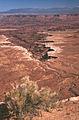White Rim from Mesa Arch (3679553974).jpg