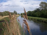 Wicken Lode1.JPG