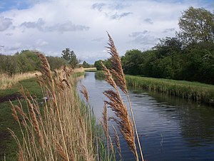 In the Fen Country - Wicken Fen