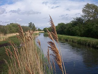 <i>In the Fen Country</i>