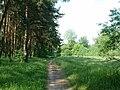 Wielkopolski Park Narodowy RB4.JPG
