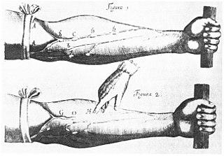 <i>Exercitatio Anatomica de Motu Cordis et Sanguinis in Animalibus</i> book by William Harvey