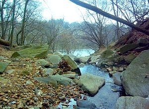Windy Run - Windy Run near its confluence with the Potomac