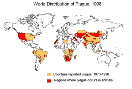Worldwide distribution of plague-infected animals, 1998 World distribution of plague 1998.PNG