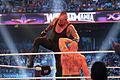 WrestleMania XXX IMG 5003 (13771415394).jpg