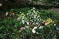 Wuppertal - Waldfriedhof Krummacherstraße - Pina 02 ies.jpg