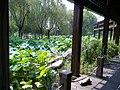 Wuzhong, Suzhou, Jiangsu, China - panoramio (257).jpg