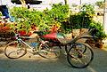 Xe đạp chở hàng.jpg