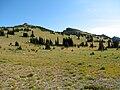 YakimaPark.jpg