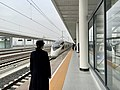 Yangzhoudong Railway Station with the entrance of a CR400BF EMU train.jpg