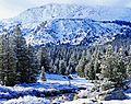 Yosemite High Country, 5-15 (26788070381).jpg