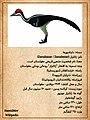 Zanabazar DinoCard Fa.jpg