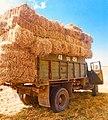 ZiL-130 truck in the fields of Maralik.jpg