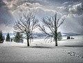 Zima projektPV HD.jpg