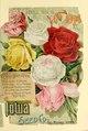 (Seed catalogue and garden guide) (IA seedcataloguegar1894iowa).pdf