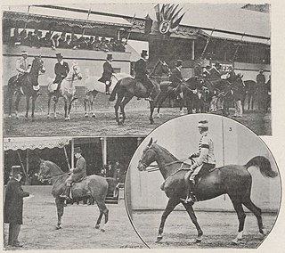 Equestrian at the 1900 Summer Olympics – Hacks and hunter combined Equestrian at the Olympics