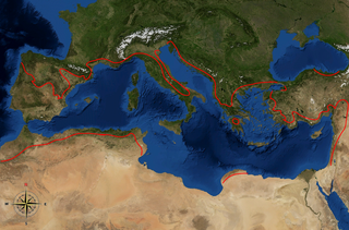 Karte der Ölbaumgrenze im Mittelmeerraum