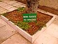 Μην πατάτε το πράσινο! - panoramio.jpg