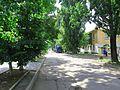 Борисовка. 4 июня 2013г. - panoramio (6).jpg