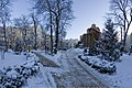 Золотые ворота зимним утром 2.jpg