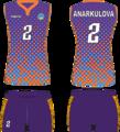 Игровая форма женской волейбольной команды Алтай-фиолетовый.png