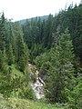 Каньонът на река Бъндерица,гледан от пътеката за х.Бъндерица - panoramio.jpg