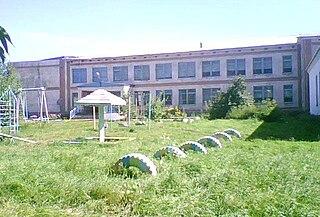 Tretyakovsky District District in Altai Krai, Russia