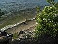 МарьянскоеМОРЕ - panoramio.jpg