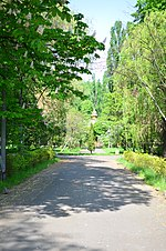 Наводницький парк в Києві. Фото 2.jpg