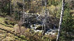 Река Белокуриха.JPG