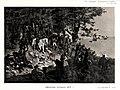 Рисунок к статье «Кавказская война». Военная энциклопедия Сытина (Санкт-Петербург, 1911-1915).jpg