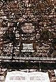Роспись одной из стен могилевской синагоги. Фотография А. А. Миллера.jpg