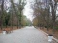 Сакський парк, м. Саки, автономна республіка Крим.jpg