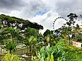 Сингапур - panoramio (35).jpg