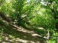 Спуск с горы Маяк - Mayak downhill - panoramio.jpg