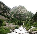 მთის მდინარე - panoramio.jpg