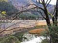 九寨沟 Jiuzhaigou National Park - panoramio.jpg