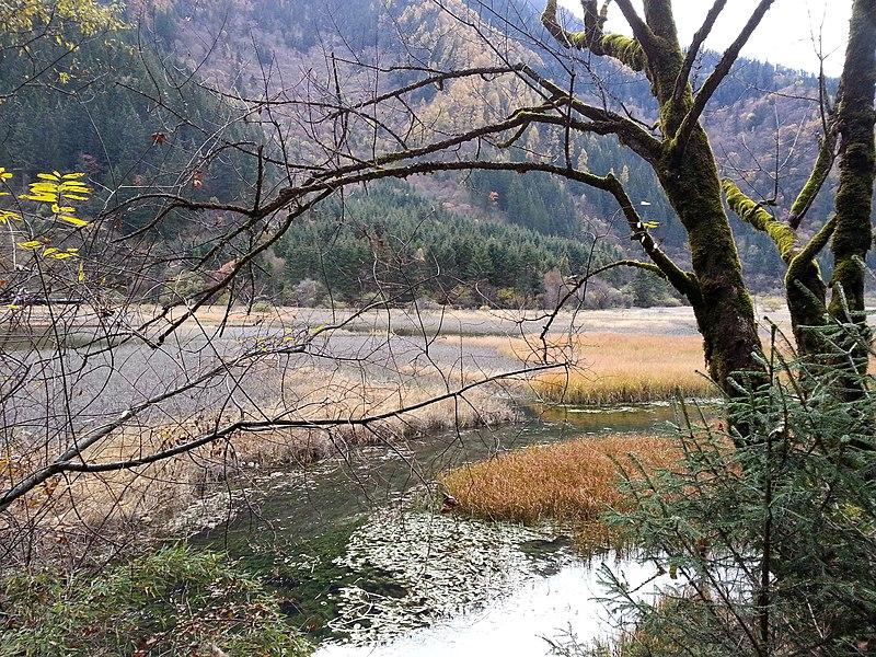 File:九寨沟 Jiuzhaigou National Park - panoramio.jpg