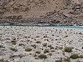 叶尔羌河岸 - Yarkand River Bank - 2015.04 - panoramio.jpg