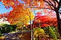 平岡樹芸センター(Hiraoka arboriculture center) - panoramio (1).jpg