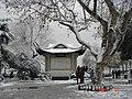 杭州.西湖雪景(圣塔闲亭) - panoramio.jpg