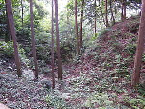 Noda Castle - Ruined site of Noda Castle in Mikawa Province
